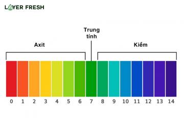 Cân bằng độ pH trong cơ thể